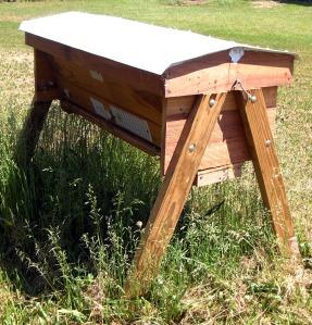 top bar hives, natural beekeeping, organic beekeeping,