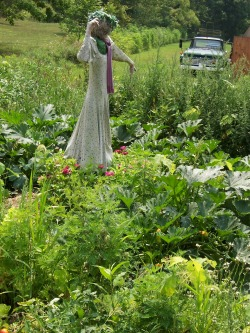 Bit of Earth Farm scarecrow